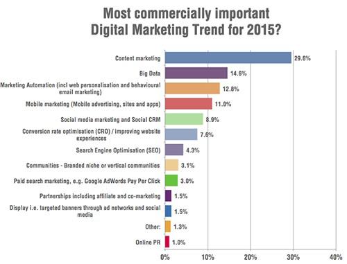 Digital-marketing-trends-2015-survey1
