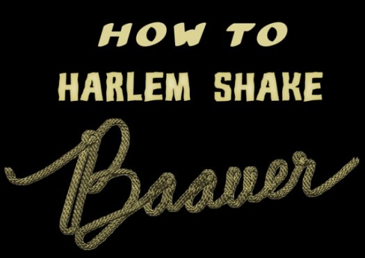 How-to-Harlem-Shake-Baauer-e1360539932811
